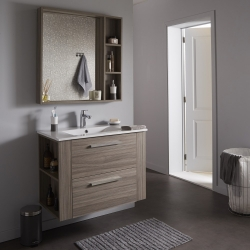 Ensemble meuble de salle de bain + miroir couleur olme gris